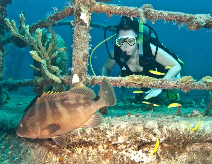 Austin Smith Wreck, Exumas, Bahamas