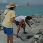 Warderick Well's Cay, Exuma Land and Sea Park, Bahamas
