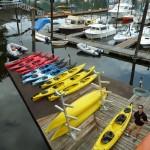 A busy kayaking day at the Brentwood Bay Resort Marina!