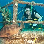 Ideally you will want your scuba diver portrait to include some marine life in addition to the diver