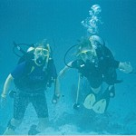 Point a camera at a diver and watch them go from graceful o awkward!