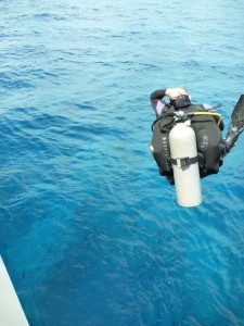 Dave Smith is a true Freestyler with his Cannon ball scuba dive entry!