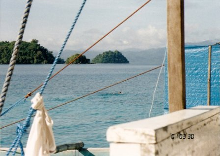 That's Mia snorkelling for the first time off a boat in The Philippines!